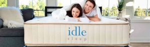 Tuft & Needle Down Alternative Duvet Insert